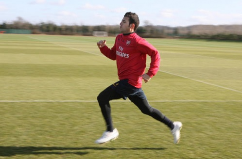 gun__1236349294_fabregas_training04